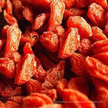 China roh wolfberry honig