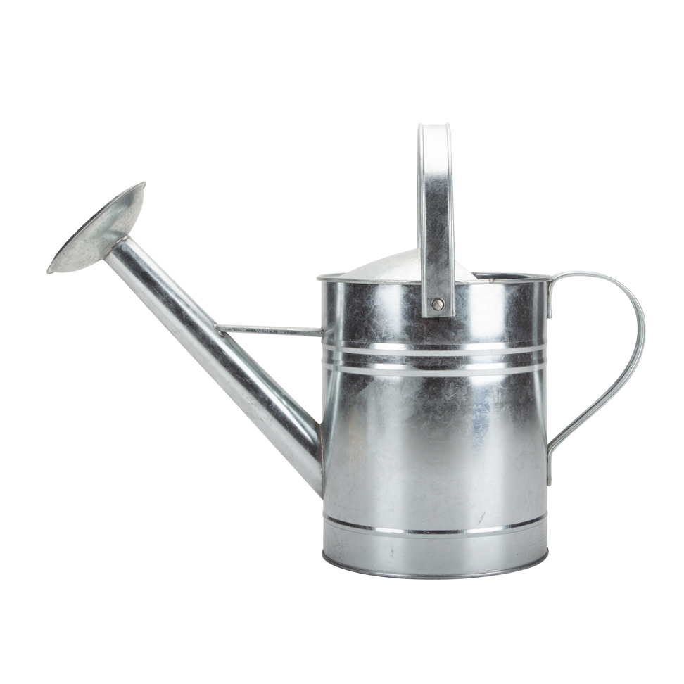 Metal Watering Can Decorative