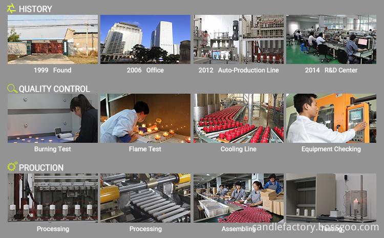 8 Company Information