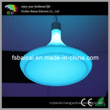 Indoor Ceiling Light LED Ceiling Decorative Light Bcd-461L