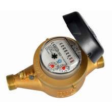 Multi Jet Iron Dry Type Water Meter (LXSC-Z1)