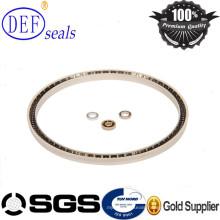 PTFE Material Standard Spring Seals