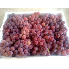 Fresh Grape with Green and Red