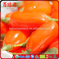 Health food goji berry producer