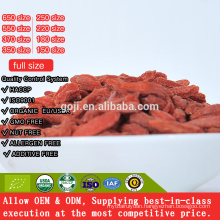 Best Organic Certificated Nutrition Goji Berry with high quality