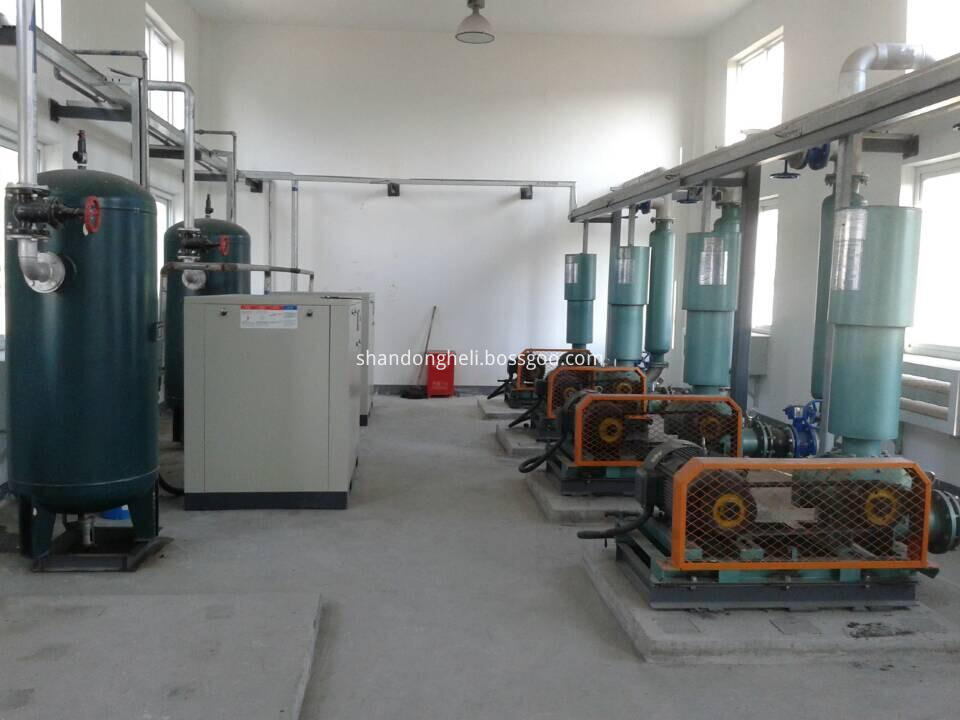 water treatment roots blower