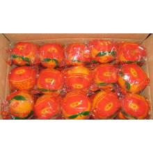 Sweet Taste Fresh Navel Orange