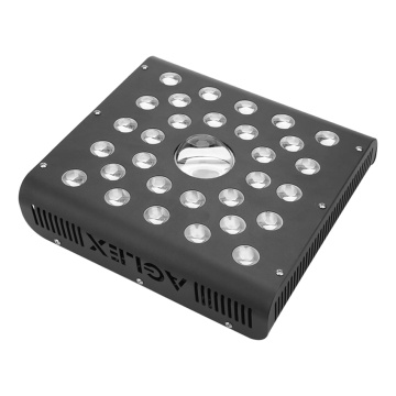 2020 Panel pequeño 600W LED Grow Light
