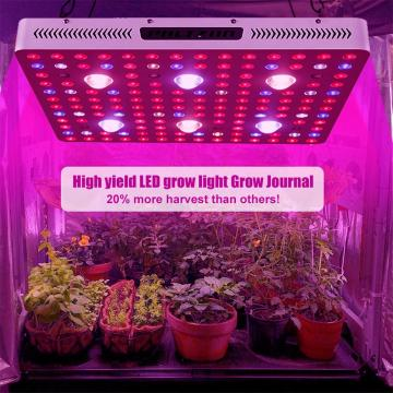 Luces de cultivo LED COB de Phlizon para interiores