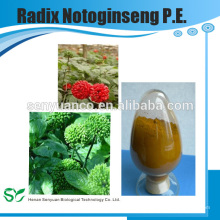 High Quality Herbal Extract Radix Notoginseng P.E.