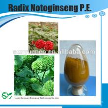 Высококачественный травяной экстракт Radix Notoginseng PE