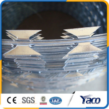 Favourable price high quality razor wire in kenya