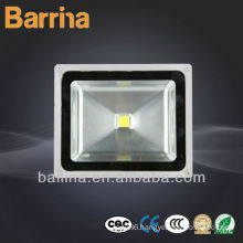 High power 100W Outdoor LED project light