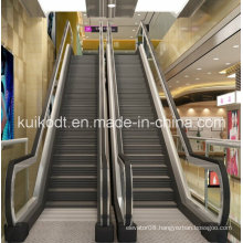450cm Public Escalator