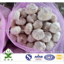 New Crop Fresh Normal Alho Branco Tamanho: 5.0cm 10kgs Mesh Bag