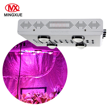 Customizable Cob led cresce luz 500w 300w 800w 1000w