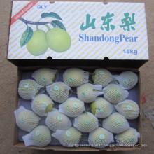 Green Shandong Poire Prix de gros