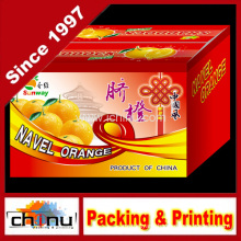 Cardboard Colored Printing Corrugated Box (1149)