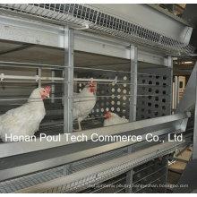 H Frame Layer Chicken Cage Equipment