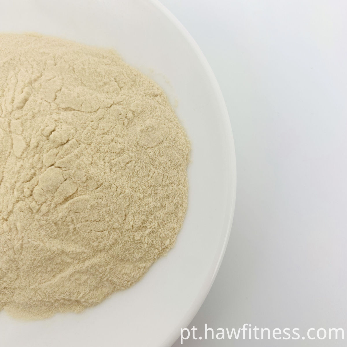 Tuckahoe Extract Powder