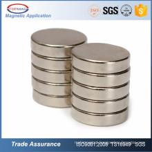 Disk Sintered Neodymium Magnet