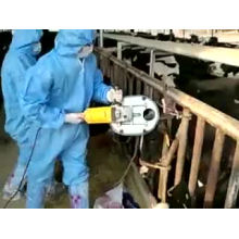 Veterinary Bull Horn Dehorner Bloodless Cattle Calf Saw Angle Grinder Remover Electric Automatic Cow Horn Remove Machine