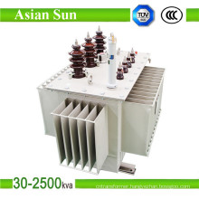 315kVA Three Phase Oil Immersed Distribution Transformer (33KV)