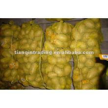Liefern 2012 China frische Kartoffel