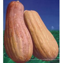 HPU16 Yugou hammer orange F1 semillas de calabaza híbridas