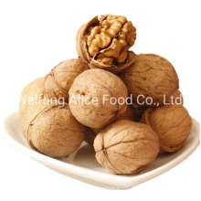 Bulk Quality China Wholesale Size 28mm/30mm/32mm up Easy Cracked Walnut in Shell