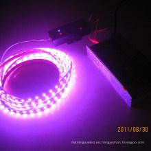 Luz de tira flexible del color rosado del LED