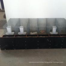 Sale mink cage / mink farming cage ( professional manufacturer )