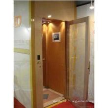 Villa Elevator of Shandong Fjzy avec une qualité parfaite