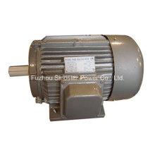 Y-Serie Dreiphasen-Gusseisen-Wechselstrom-Generator-Motor