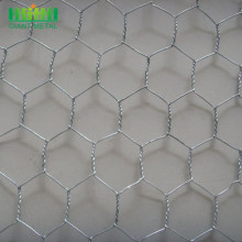 Hexagonal+wire+mesh+singapore