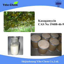 Biological Fungicide Kasugamycin 70%TC 2%SL 10%WP 6%WP