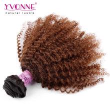 Wholesale Afro verworrenes lockiges brasilianisches Ombre Haar spinnt