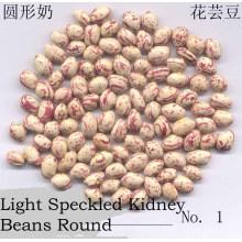 Forma redonda nova da colheita LSKB