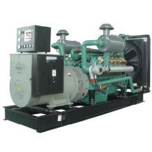 Weichai Generador Diesel (BWX302)