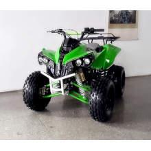 Мини-Kis спортивный Квадроцикл и Quad с скорость 45 км/Ч