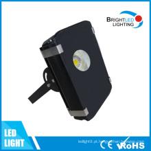 Luz do túnel do diodo emissor de luz do poder superior 50W-80W