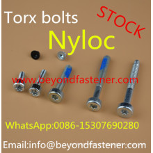 Nyloc Screw Bolts Machine Screw
