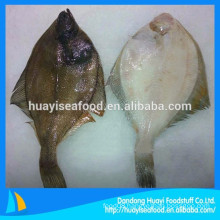wholesale new coming frozen flounder fish with reasonable price