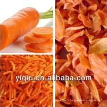 Dried carrots dedicated dehydrator