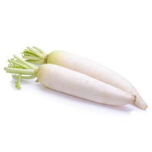 Promotional specials 100% natural Wholesale Hot Sale Chinese Fresh Big White Radish