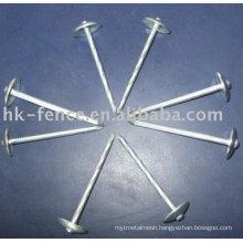 umbrella head roofing nails