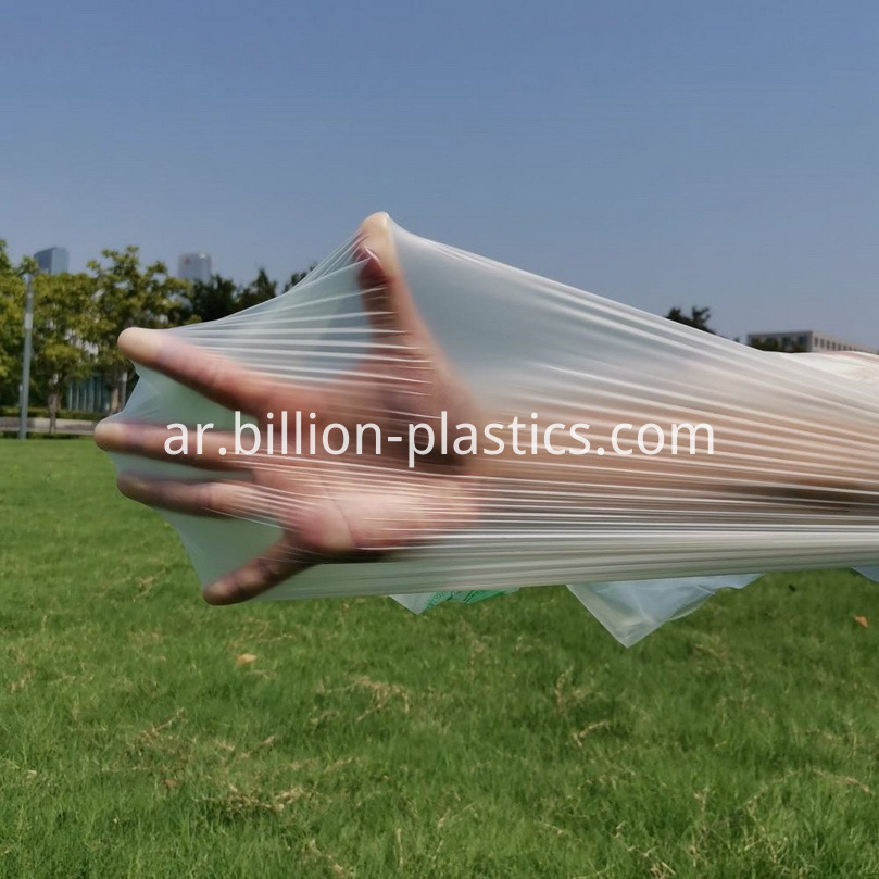 Clear Plastic Bag for Home