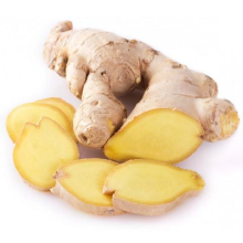 2021 High Quality Export Natural Chinese New Fresh Organic Ginger Whole To Export