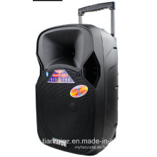 12-Zoll-Lautsprecher-Box in Bluetooth-Leistungsverstärker F87 gebaut