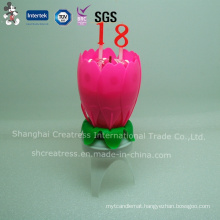 Chrysanthemum Flower Birthday Candle with Number